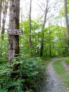 Millay poetry trail